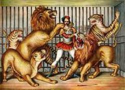liontaming