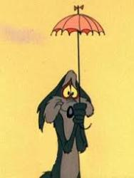 coyoteumbrella