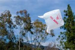 floatingplasticbag