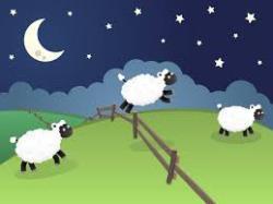 sheepdreams