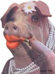 lipstickonapig