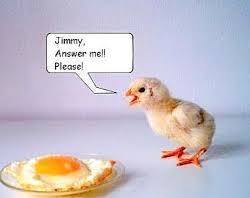 chickcomehometoroost